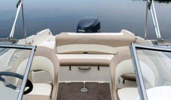 Stingray 234 LR Outboard vol